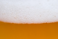 Si chiama Biga la prima birra Italian Grape Ale totalmente biologica